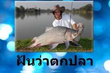 ทำนายฝัน ฝันว่าตกปลา