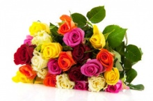 ทายนิสัยจากดอกไม้ที่ชอบ